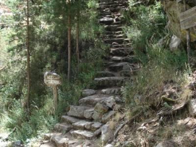 Entre el Puerto y Chorro de Navafría;senderismo por la pedriza madera tejo ruta de senderismo madri